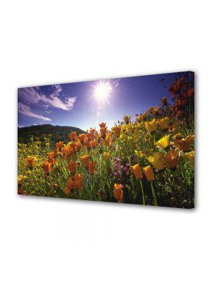 Tablou Canvas Flori Soare puternic