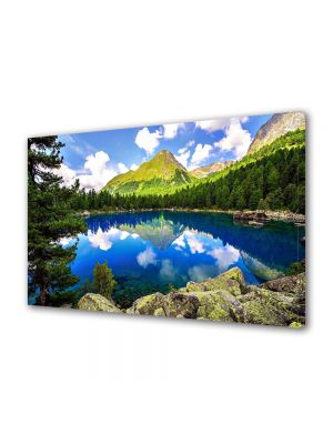 Tablou VarioView MoonLight Fosforescent Luminos in intuneric Flori Lac montan