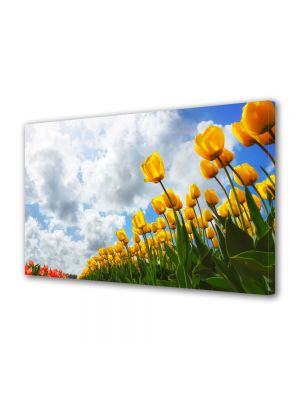 Tablou Canvas Flori Lan de flori