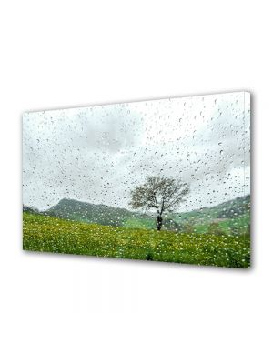 Tablou Canvas Flori Dupa ploaie