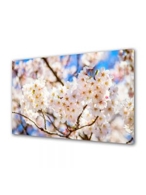 Tablou Canvas Flori Crengute de copac