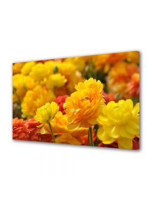 Tablou Canvas Luminos in intuneric VarioView LED Flori Nuante de galben