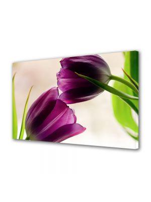 Tablou Canvas Luminos in intuneric VarioView LED Flori Doua lalele violet