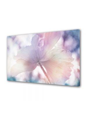 Tablou Canvas Flori Zi de vara