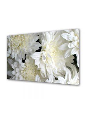 Tablou Canvas Flori Inflorit