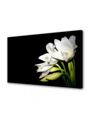Tablou Canvas Luminos in intuneric VarioView LED Flori Liliac alb