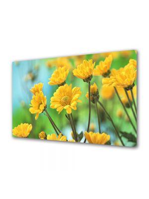 Tablou Canvas Flori Crizanteme galbene