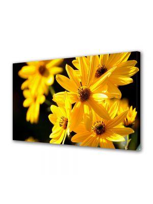 Tablou Canvas Luminos in intuneric VarioView LED Flori Floricele galbene