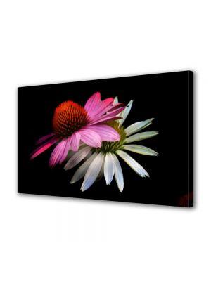 Tablou Canvas Luminos in intuneric VarioView LED Flori Flori stilizate