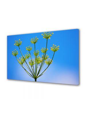 Tablou Canvas Luminos in intuneric VarioView LED Flori Chimen dulce