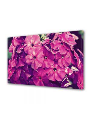 Tablou Canvas Flori Fior violet