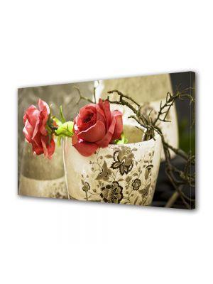 Tablou Canvas Flori Trandafiri in cana