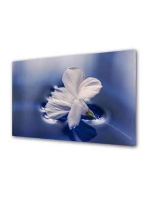 Tablou Canvas Luminos in intuneric VarioView LED Flori Floare plutind pe apa