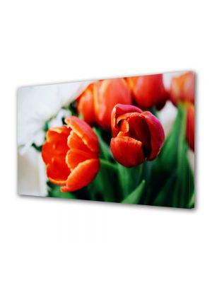 Tablou Canvas Flori Portocaliu puternic