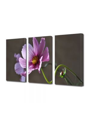Set Tablouri Multicanvas 3 Piese Flori Gratie