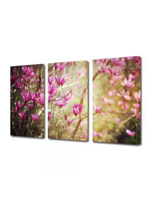 Set Tablouri Multicanvas 3 Piese Flori Magnolie