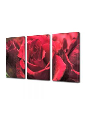 Set Tablouri Multicanvas 3 Piese Flori Obsesie rosie