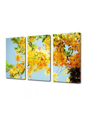 Set Tablouri Multicanvas 3 Piese Flori Multe flori galbene