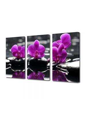 Set Tablouri Multicanvas 3 Piese Flori Orhidee pe apa