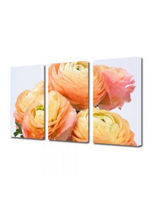 Set Tablouri Multicanvas 3 Piese Flori Flori persane galbene