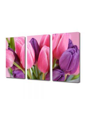 Set Tablouri Multicanvas 3 Piese Flori Lalele violet si roz