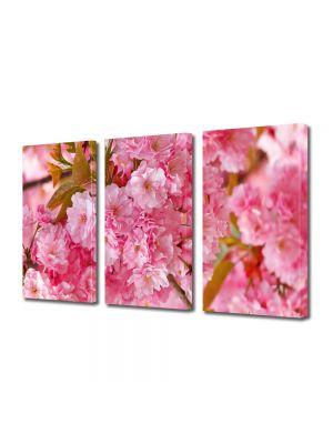 Set Tablouri Multicanvas 3 Piese Flori Copac Sakura japonez inflorit