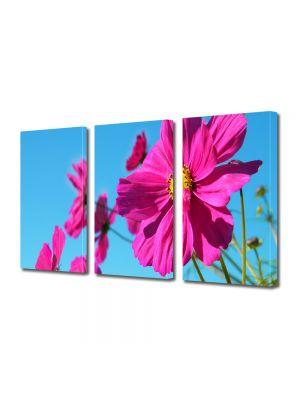 Set Tablouri Multicanvas 3 Piese Flori Fericire rozalie