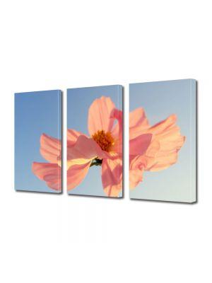 Set Tablouri Multicanvas 3 Piese Flori Petale in vant