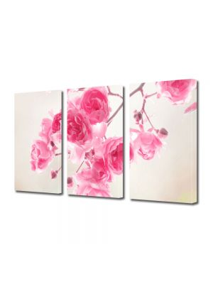 Set Tablouri Multicanvas 3 Piese Flori Frandafiri roz de gradina