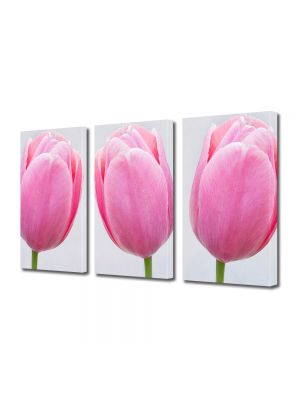 Set Tablouri Multicanvas 3 Piese Flori Trei lalele roz