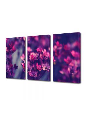 Set Tablouri Multicanvas 3 Piese Flori Flori salbatice violet
