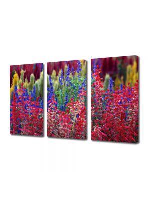 Set Tablouri Multicanvas 3 Piese Flori Flori curcubeu
