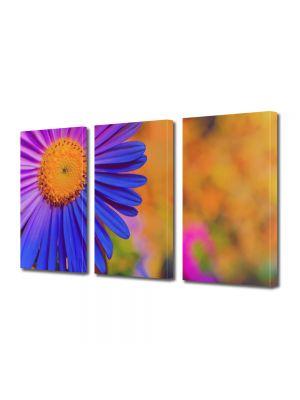 Set Tablouri Multicanvas 3 Piese Flori Floare Violet