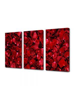 Set Tablouri Multicanvas 3 Piese Flori Petale de trandafiri rosii