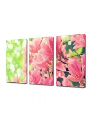 Set Tablouri Multicanvas 3 Piese Flori Flori de primavara frumoase