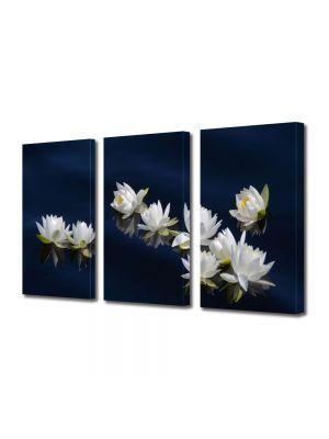Set Tablouri Multicanvas 3 Piese Flori Flori pe apa