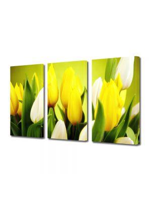 Set Tablouri Multicanvas 3 Piese Flori Lalele albe si galbene