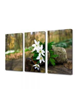 Set Tablouri Multicanvas 3 Piese Flori Flori de padure