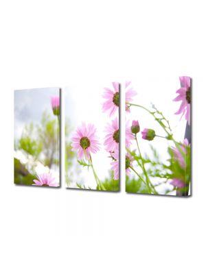 Set Tablouri Multicanvas 3 Piese Flori Flori de vara inflorite