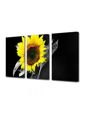 Set Tablouri Multicanvas 3 Piese Flori Floarea soarelui