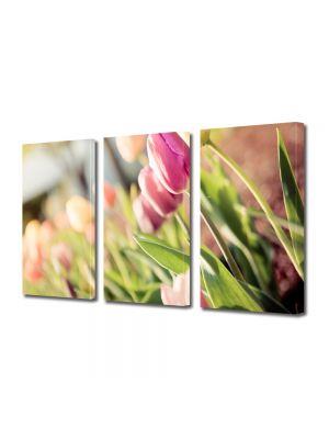 Set Tablouri Multicanvas 3 Piese Flori Lalele la soare