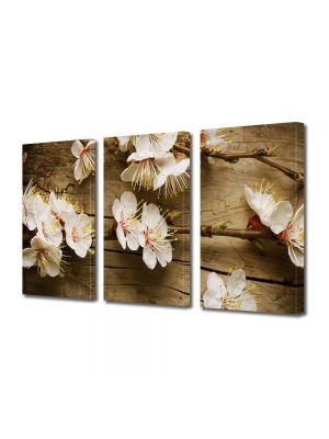 Set Tablouri Multicanvas 3 Piese Flori Flori albe