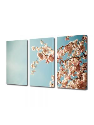 Set Tablouri Multicanvas 3 Piese Flori Crengura cu lfori albe