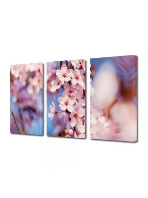 Set Tablouri Multicanvas 3 Piese Flori Crenguta cu flori