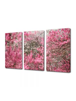 Set Tablouri Multicanvas 3 Piese Flori Ninge cu petale