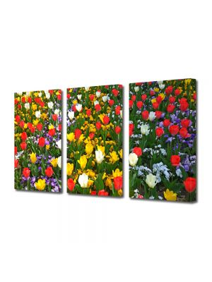 Set Tablouri Multicanvas 3 Piese Flori Culori amestecate