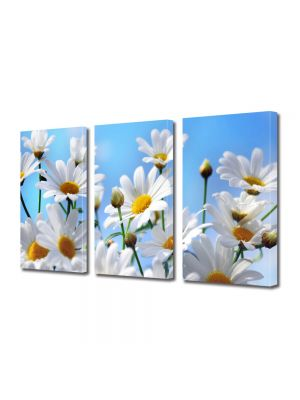 Set Tablouri Multicanvas 3 Piese Flori Flori in camp