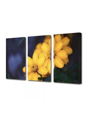 Set Tablouri Multicanvas 3 Piese Flori Floricele galbenele