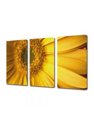 Set Tablouri Multicanvas 3 Piese Flori Galben perfect