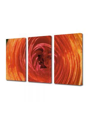 Set Tablouri Multicanvas 3 Piese Flori Spirala de petale